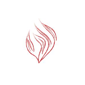 img-fire_behavior_wood-0-300x300 User